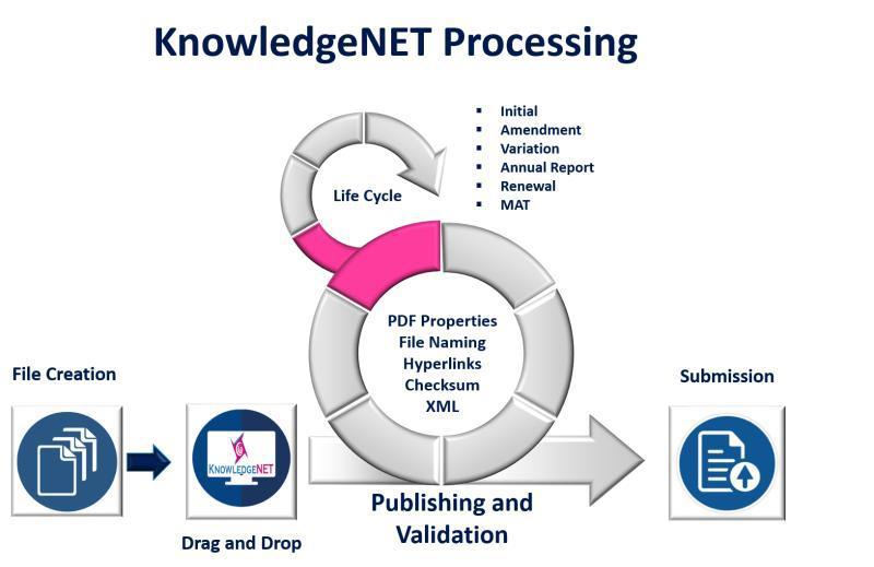 KnowledgeNET Processing